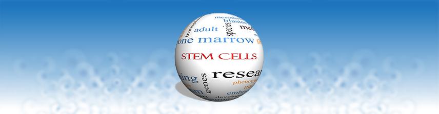 Reprogramming Human Stem Cells-Scientific Daily Report